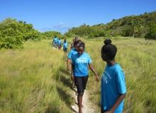 Environmentally  friendly field walk